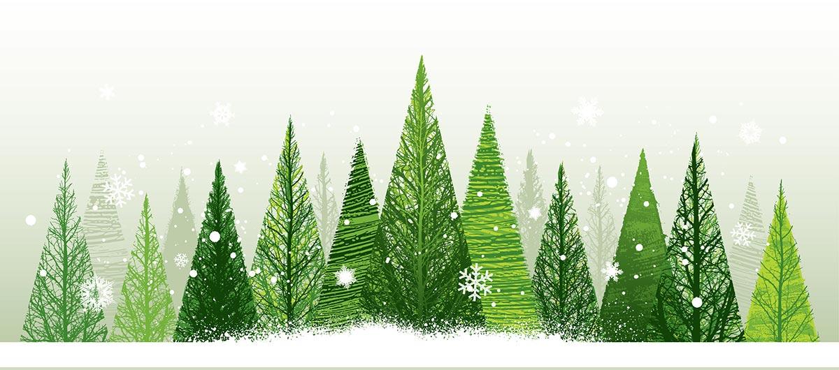 christmas-trees-snow
